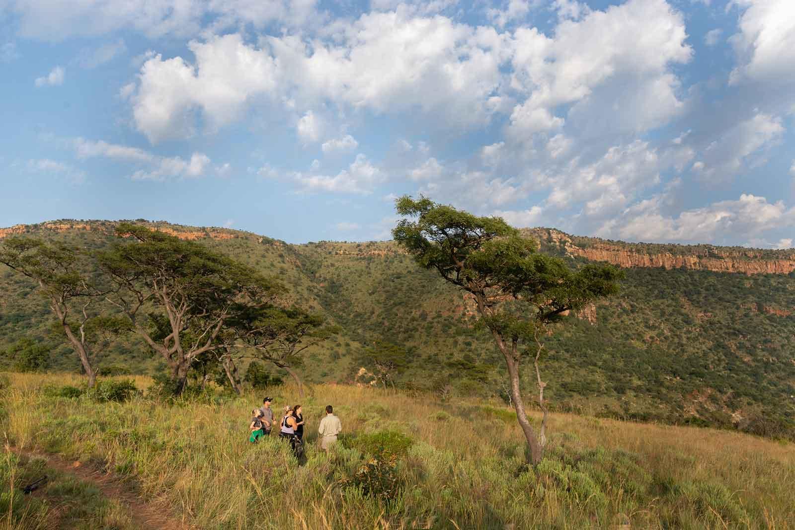 4f-bush-walk
